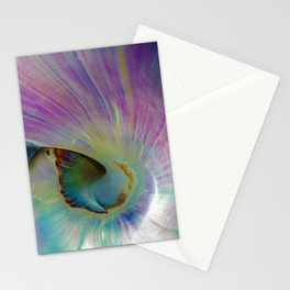 Spiraling Shell Stationery Cards
