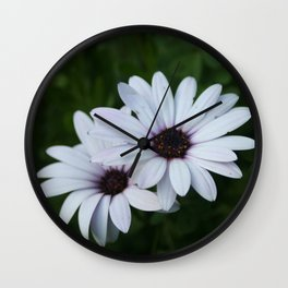 Friendship - Two African Daisies Wall Clock