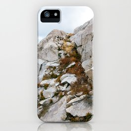 Desolation Mountainside iPhone Case