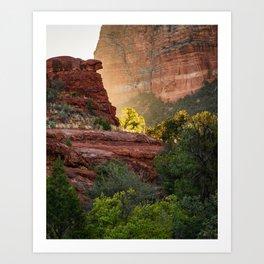 Glowing Tree at Sedona Bell Rock Trail Art Print
