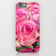 Pink Roses Slim Case iPhone 6