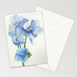 Blues In Nepal Stationery Cards