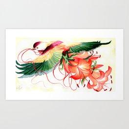 Rose Crowned Fruit Dove Art Print
