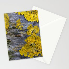 Tree Bark Pattern # 3 with yellow lichen Stationery Cards