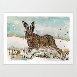 Winter Hare Art Print