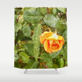 Floral Print 043 Shower Curtain