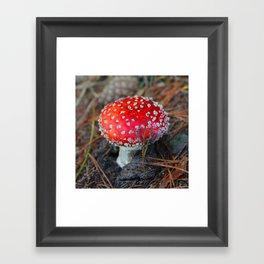 Toxic Beauty Framed Art Print
