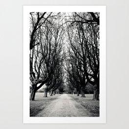 East Park HULL Art Print