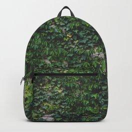 Lush Backpack