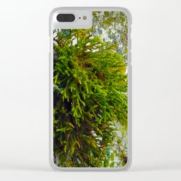Shroud of Moss - Sailboat Series #2 Clear iPhone Case