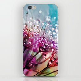 Dewdrops & Rainbows iPhone Skin