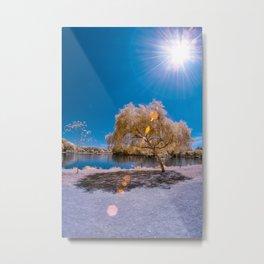 Lens Flare Tree Metal Print