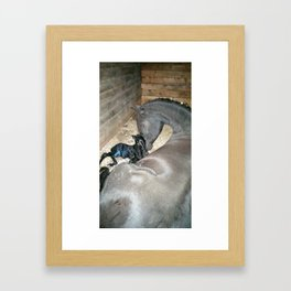 Mare and foal Friesian Framed Art Print