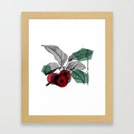 Malus Domestica Framed Art Print