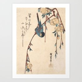 Blue Chickadee Art Print
