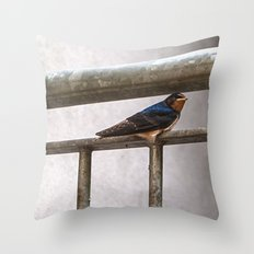One Swallow Doesn't Make a Summer Throw Pillow