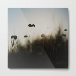 silhouetted ... Metal Print
