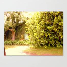 The Garden Door Canvas Print