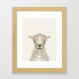 little lamb Framed Art Print