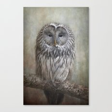 Ural Owl ( Grey owl ) Canvas Print