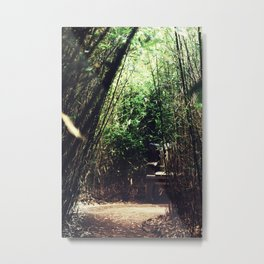 Wooden Bench in a Bamboo Forest Metal Print