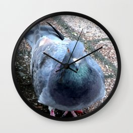 Urban Pigeon on City Sidewalk Wall Clock