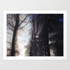 Sun Rays Art Print