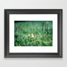 Mushrooms and Raindrops Framed Art Print