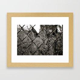 Fenced Framed Art Print