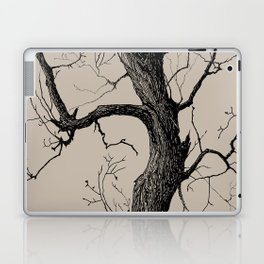 Old tree Laptop & iPad Skin