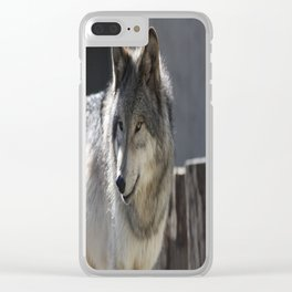 What are you looking at? Clear iPhone Case