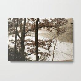 Walden Pond Metal Print