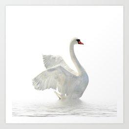 WHITE ON WHITE-BEAUTIFUL SWAN Art Print