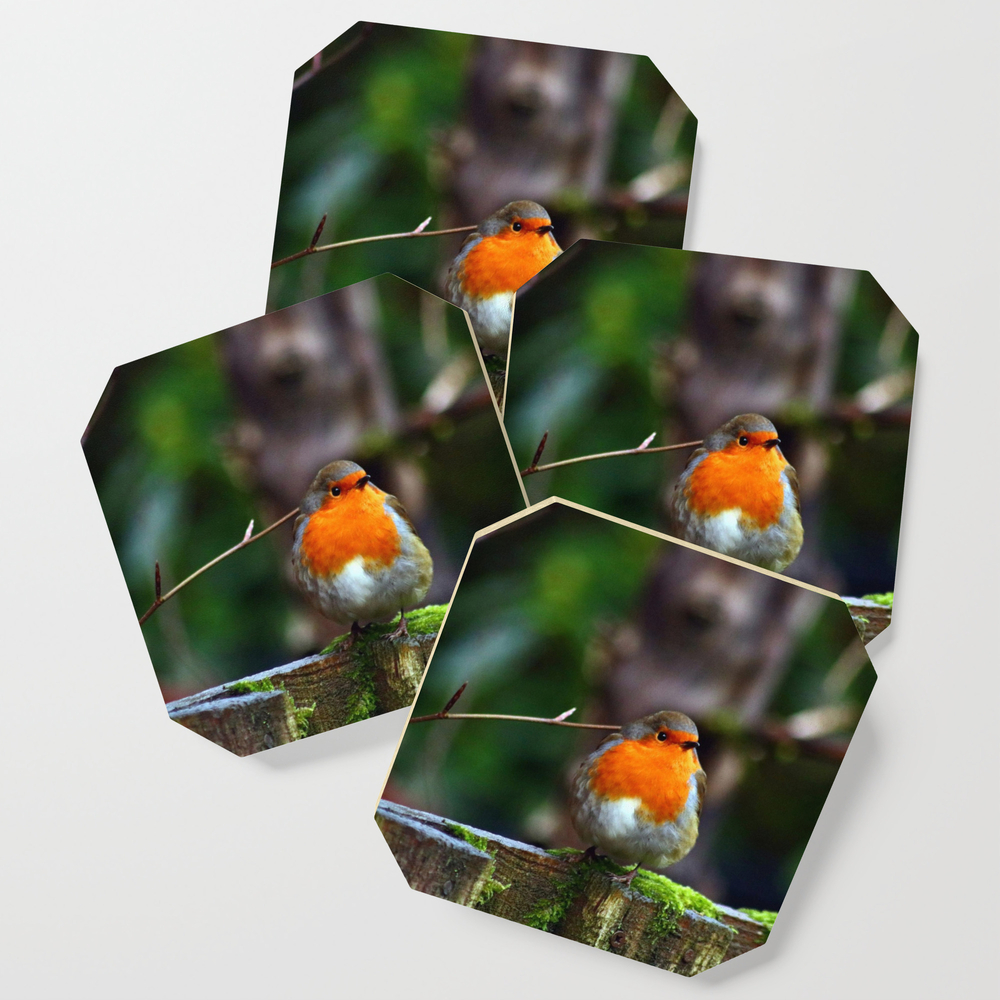 Round Robin Redbreast Coasters by cathymcreations (S6C10710313) photo