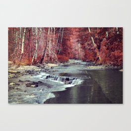 River Takes Road Canvas Print