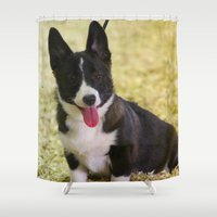 corgi Shower Curtains featuring Cute Corgi by IowaShots