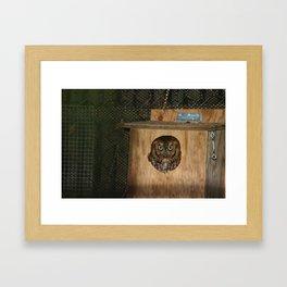 Hibou means owl Framed Art Print