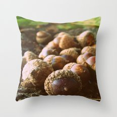 Acorns Throw Pillow
