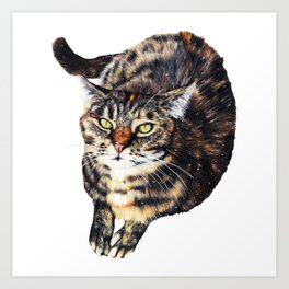 Kitty Cat Chili Art Print