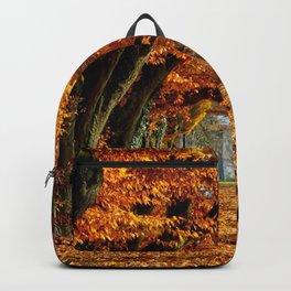 autumn Park Backpack