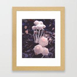 Fungus Blush Framed Art Print