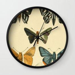 Vintage Moth Illustrations Wall Clock