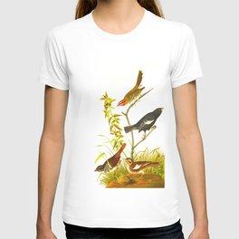 Lark Finch, Prairie Finch, Brown Song Sparrow T-shirt