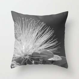 Calliandra Flower Throw Pillow