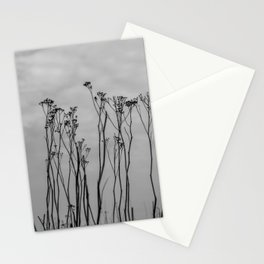 Dutch landscape flowers in winter - black and white - ooijpolder fine art photography Art Print Stationery Cards