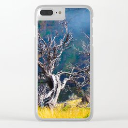 Old trees against the backdrop of the mountain Clear iPhone Case