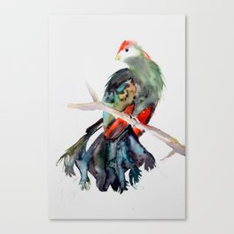 Red-crested Turaco Canvas Print