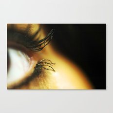 What We Do For Beauty Canvas Print