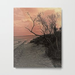 Diffused Beach Tree Metal Print