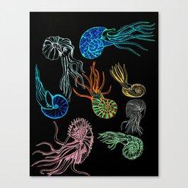 Ammonites at Night Canvas Print